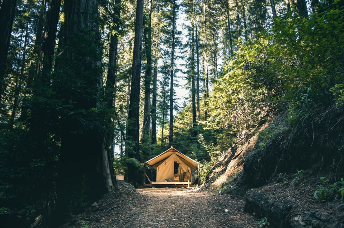 Camping And Recreational Gear