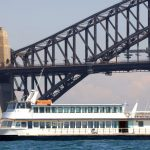 Party boat goes under hammer before under water